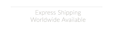 Fast International Shipping
